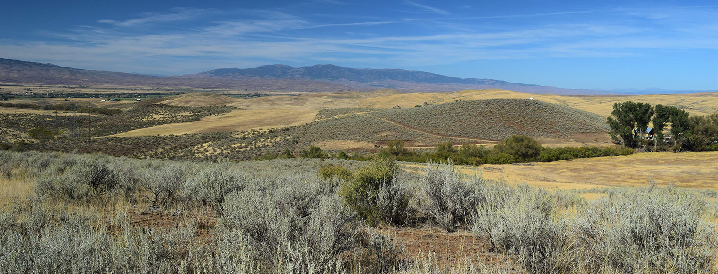 Wolfe Ranchland cover